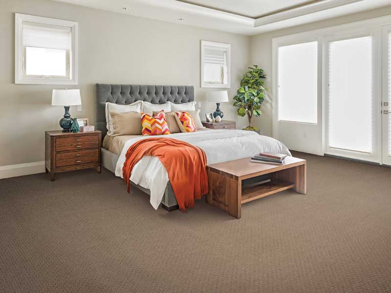 minimalistic room with clean carpets
