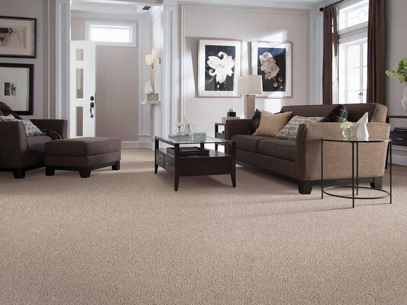 neutral tone carpet in modern styled living room